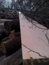 Vierkant Holz beim Holzhändler.